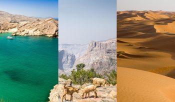 Oman blog