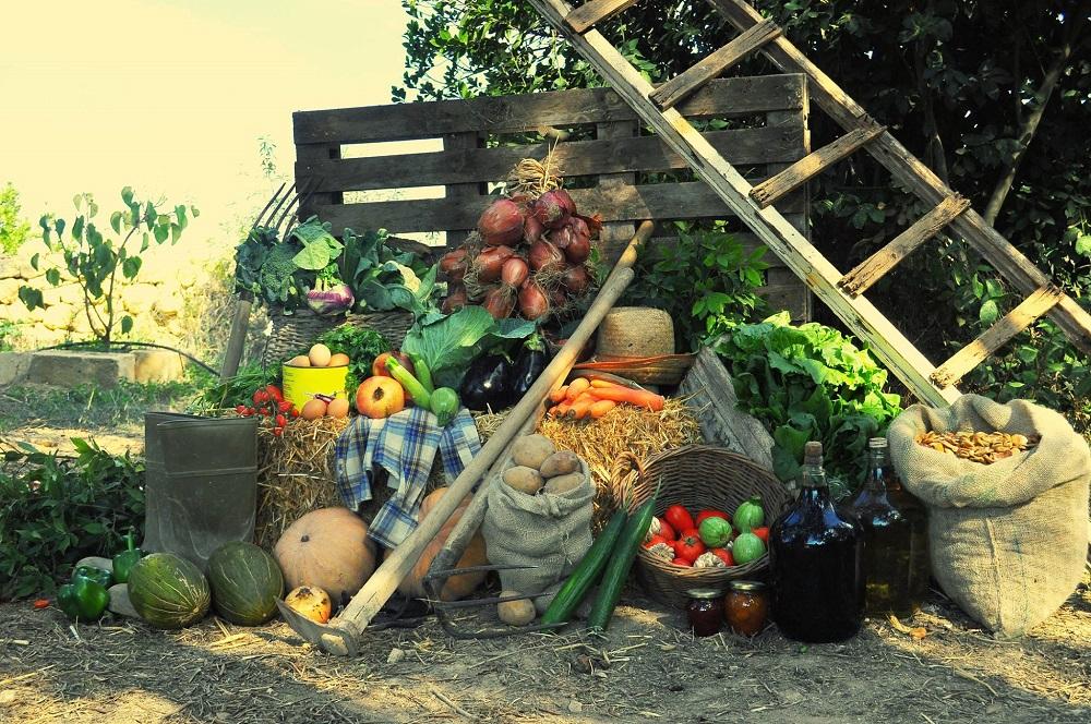 Malte agricole - 4
